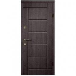 Входная дверь 107
