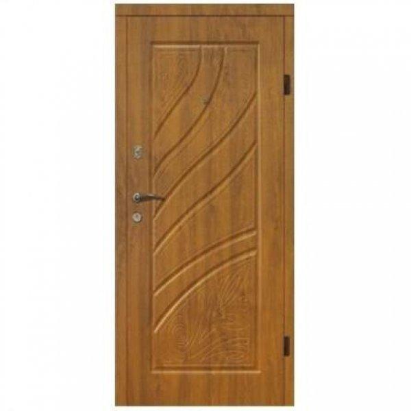 Входная дверь 206